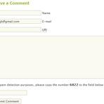 Segurança - Comentários internacionais no site Wordpress o que é e de onde vem?