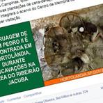A NOTÍCIA MAIS VERÍDICA QUE A PREFEITURA DE HORTOLÂNDIA JÁ PUBLICOU