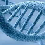 Efeitos da radiação no genoma humano