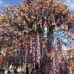 Cultura Alemã: Árvore de Páscoa com 80 mil ovos é atração em Pomerode