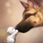 Animais - Concurso Pet do Mês