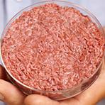 Porque carne cultivada em laboratório não é vegana, nem é uma panacéia