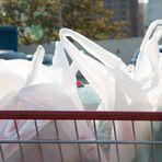 Termina a distribuição de sacolinhas gratuitas