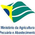 Apostila Concurso MAPA - Ministério da Agricultura, Pecuária e Abastecimento
