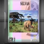 Educação - Documentário - Selvas
