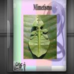 Educação - Documentário - Mimetismo