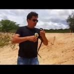Vídeos - Conheça a Muçurana, a cobra do bem !