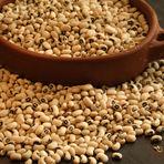 Culinária - Prepare Feijão em 20 Minutos e Tenha um Prato Rico em Nutrientes