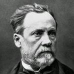 Vinho de Louis Pasteur será vendido em leilão beneficente