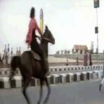 Cavalo treinado pelo Chuck Norris é outro nível