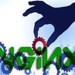 NginX: Otimizando o Desempenho
