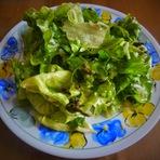 Culinária - Salada de alface c/ espargos selvagens e molho de mostarda!