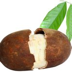 Saúde - Benefícios do cupuaçu e suas propriedades nutricionais