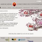 Fotos - Concurso fotográfico aves ameaçadas do Brasil