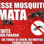 Utilidade Pública - Tudo o que você precisa saber sobre a dengue