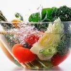Saúde - A importância da higienização