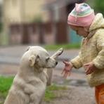 Livros -  menina e o cão