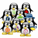 Softwares - Distribuições Linux Famosas