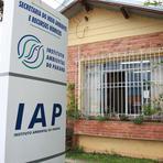 Multas ambientais de até R$ 5 mil não serão executadas pelo IAP