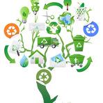 Recicle, reutilize e decore com caixotes de madeira