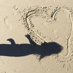 Alanis Morissette mostra foto da sombra de Ever na praia