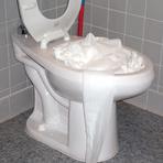 Como desentupir vaso sanitário com papel higiênico