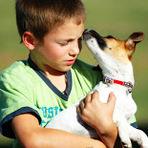 Como ajudar seu filho quando um animal de estimação morre