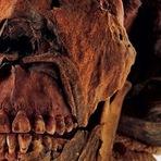O mistério da Múmia Tatuada