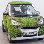 Curiosidades - Contra poluição, alemães testam carro coberto de grama
