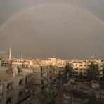 Opinião e Notícias -  A arriscada aposta russa na Síria