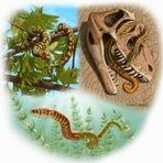 Cobras surgiram há 170 milhões de anos, diz estudo