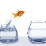 Auto-ajuda - As 3 Chaves de Como Superar o Desânimo Definitivamente