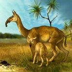 Mamíferos Ungulados Pré-históricos da América do Sul são parentes de Cavalos, revela Estudo