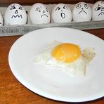 Comer ovos aumenta ou não os níveis de colesterol?