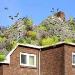 Produto simples é capaz de transformar telhado comum em um telhado verde