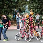 Momento Selfie no novo show do Park Beto Carrero World aqui Madagascar Circo Show