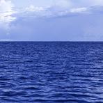Meio ambiente - Não haverá mais peixes nos oceanos em 2050, revela estudo