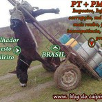 Diversos - Desenhando a situação do Brasil