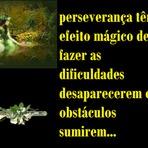 Auto-ajuda - Paciência e perseverança têm o efeito mágico...