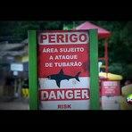 Ataque de Tubarão - Câmera Escondida SBT - Pegadinhas do Silvio Santos