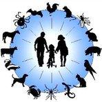 Saúde - Zoonoses e Saúde Pública