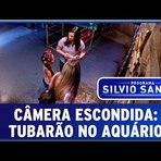 Humor - Câmera Escondida Inédita: Tubarão no Aquário - Pegadinhas do Silvio Santos