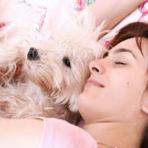 Animais - Pesquisa mostra que dormir com seu pet faz você descansar melhor