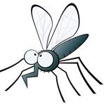 Ciência - Pernilongo também pode transmitir doenças? Entenda o risco