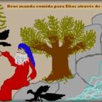 Diversos - Deus manda comida para Elias através de corvos