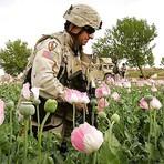 Internacional - C.I.A. é a maior traficante de drogas do planeta…