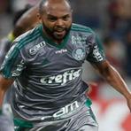Futebol - Que feio Palmeiras, em casa Palmeiras perde para o Linense